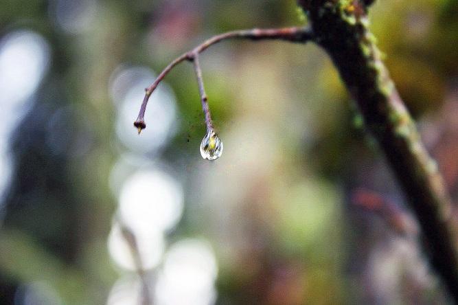 A single glissening drop